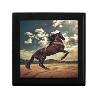 Desierto del caballo salvaje joyero cuadrado pequeño