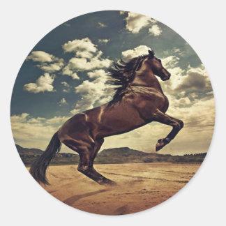 Desierto del caballo salvaje pegatinas redondas