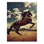 Desierto del caballo salvaje tarjeta postal