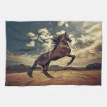 Desierto del caballo salvaje toallas de cocina
