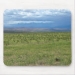 Desierto meridional de Idaho Tapete De Raton