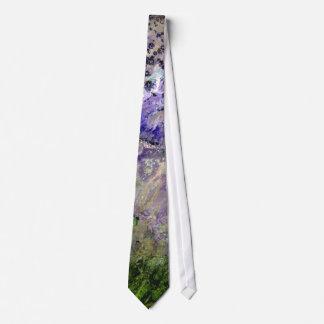 Desierto pintado corbatas