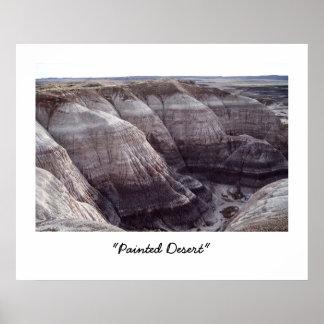 Desierto pintado póster