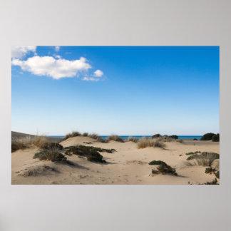 Desierto Póster
