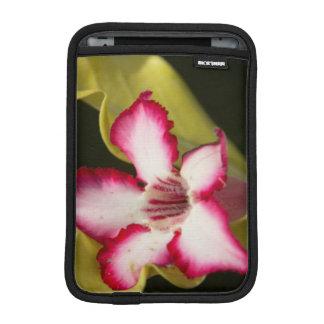Desierto-Rosa (Adenium Obesum), Suráfrica Funda De iPad Mini