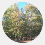 Desierto y árboles pegatinas redondas