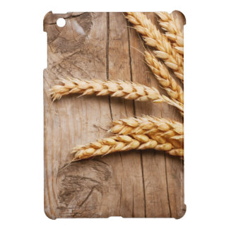 Design Background illustration iPad Mini Case