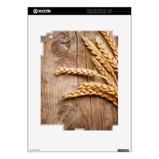 Design Background illustration Skin For iPad 2