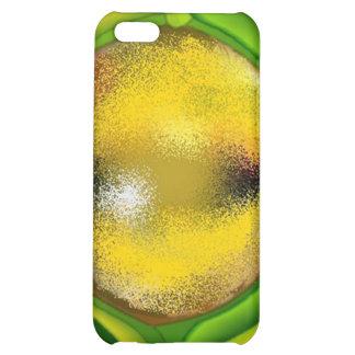 Design Reptile Lizard Eye Reptilian Geek Iphone 4 Case For iPhone 5C