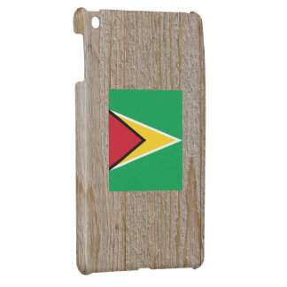 Designer Guyana Flag Box iPad Mini Case
