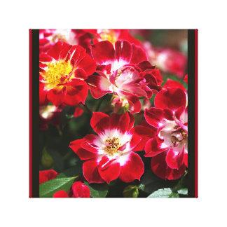 Designer Red Carpet Roses Wall Art by bubbleblue