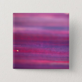 Designers button : purple