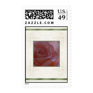 Designs by Judith Heath ~ Pink Rose Stamps