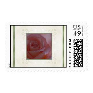 Designs by Judith Heath ~ Pink Rose Stamp