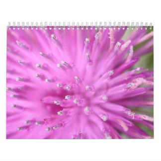 Designs in Nature Calendar
