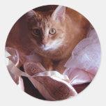 Deslizadores del gato y del ballet pegatina redonda