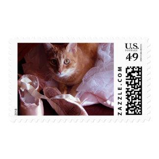 Deslizadores del gato y del ballet envio