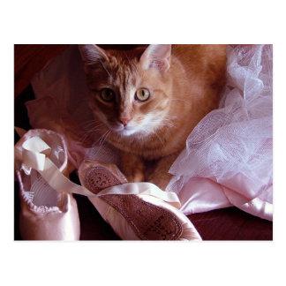 Deslizadores del gato y del ballet postal