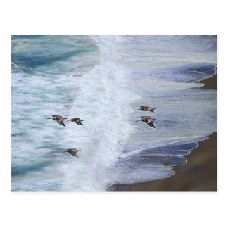 Deslizamiento sobre la playa postal