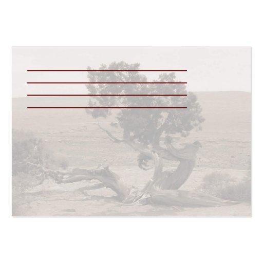 Deslumbramiento del enebro tarjetas de visita grandes