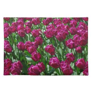 Deslumbramiento-Tulipanes coloridos Manteles Individuales