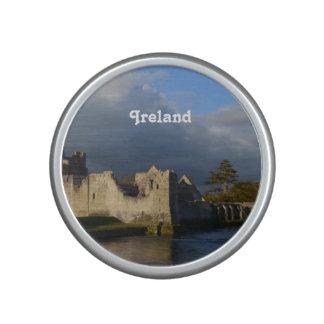 Desmond Castle in Adare Ireland Speaker