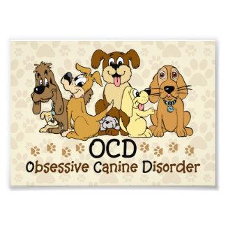 Desorden canino obsesivo de OCD Impresiones Fotográficas