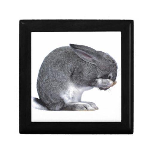 Despairing Rabbit Keepsake Box