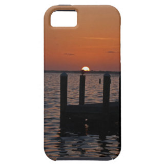 Desperately Ever After iPhone SE/5/5s Case