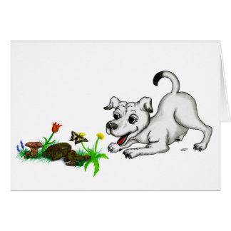 Despertar de primavera cachorro con mariposa tarjetón