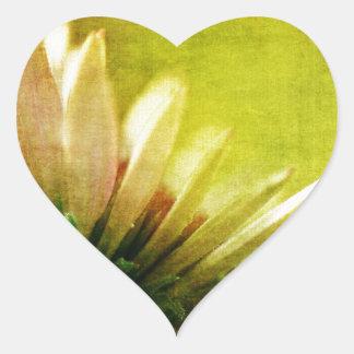 Despertar el flor del Echinacea de Coneflower Pegatinas De Corazon