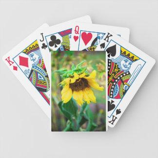 Después de la lluvia baraja de cartas