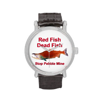 Después de salmones - pare la mina del guijarro reloj