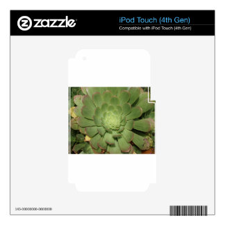 Dessert Plant iPod Touch 4G Decals