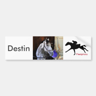 Destin Bumper Sticker