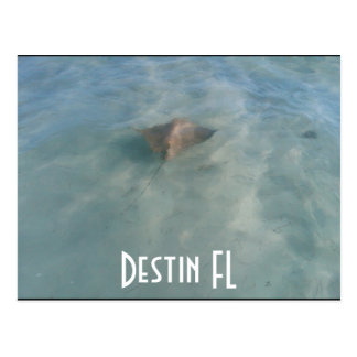 Destin FL Postcard