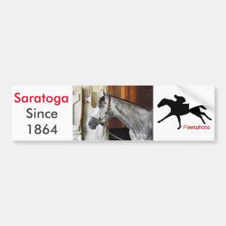 Destin - Horse Haven Bumper Sticker