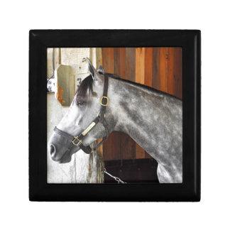 Destin - Horse Haven Keepsake Box