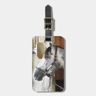 Destin - Horse Haven Luggage Tag