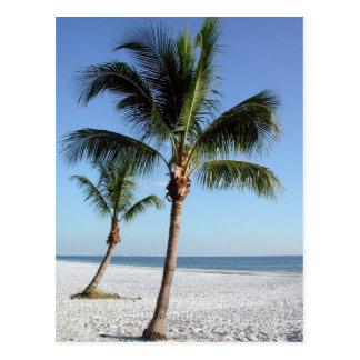 Destin la Florida Tarjeta Postal