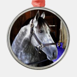 Destin Metal Ornament