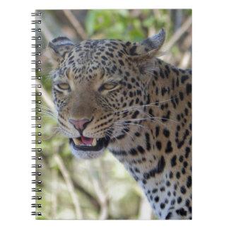 Destino animal del país de la selva de África del Libro De Apuntes