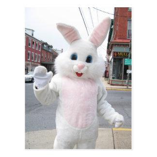 Destino animal lindo del amor de la paz del coneji tarjeta postal