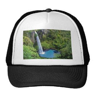 Destino del bosque del agua azul del parque de nat gorra