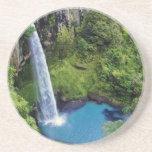 Destino del bosque del agua azul del parque de nat posavasos personalizados