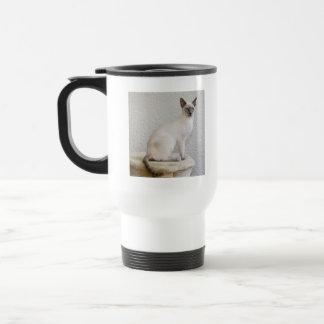 Destino del gatito del maullido del ronroneo del taza térmica