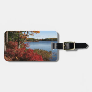 Destino del lago forest del esplendor del follaje  etiquetas para equipaje