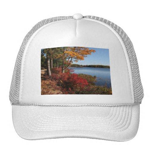 Destino del lago forest del esplendor del follaje  gorra