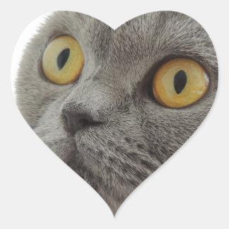 Destino gruñón del amor de la paz del ceño calcomanía corazón