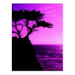 Destino púrpura del amor de la paz del océano del  postales